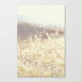Vintage Wildflowers Canvas Print