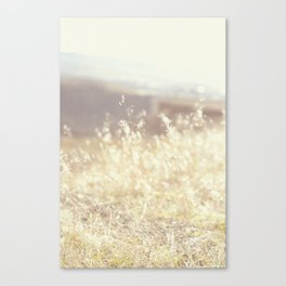 Vintage Wildflowers Canvas Print