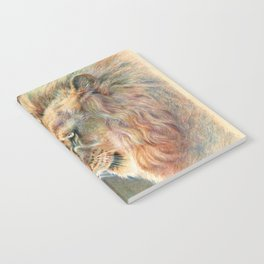 African Lion Colored Pencil Drawing Notebook
