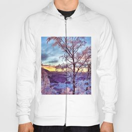 Icy Forest Awakens Hoody