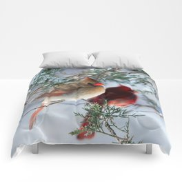 Shining on Her Own (Cardinal) Comforters