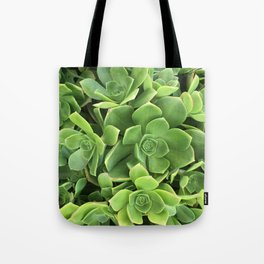 Succulents #2 Tote Bag