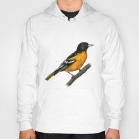 baltimore Hoodies featuring Baltimore oriole  by Science Ink