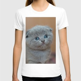 Cat_20180102_by_JAMFoto T-shirt