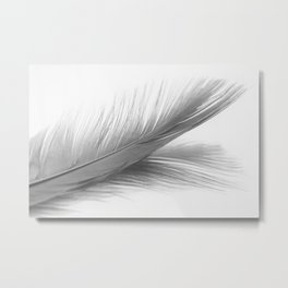 Feather and it's reflection in B&W Metal Print