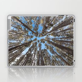 Yellowstone National Park - Lodgepole Forest Laptop & iPad Skin