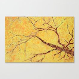 My Maple Tree Canvas Print