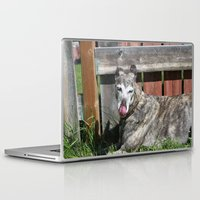 greyhound Laptop & iPad Skins featuring Greyhound by Kamilla