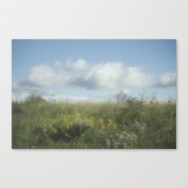 Summer Meadow XII Canvas Print