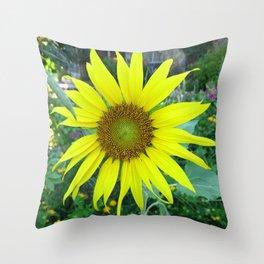 Stunning Sunflower Throw Pillow