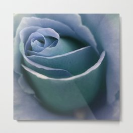 for the usual designers: another winter rose Metal Print