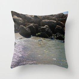 It's a Catch Throw Pillow