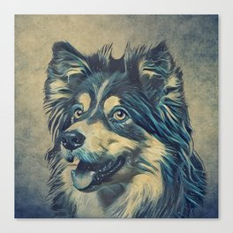 Shetland Sheepdog Painting Canvas Print