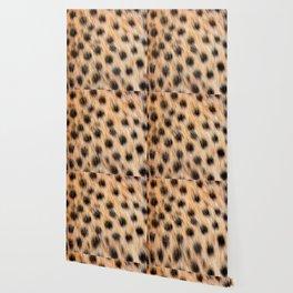Animal Print Pattern Real Cheetah Fur Pattern Wallpaper
