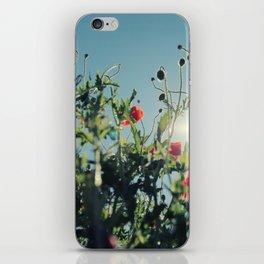 poppy flower no14 iPhone Skin