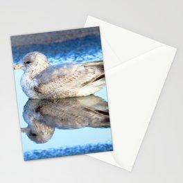 Watercolor Bird, Herring Gull 01, Nags Head, North Carolina Stationery Cards