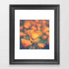 Poppyland Framed Art Print