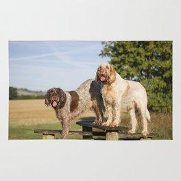 Italian Spinoni Dogs Woody & Ruben Rug