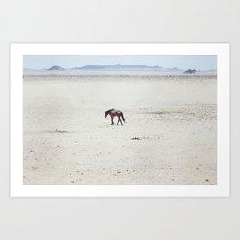 Horse 2013 Art Print