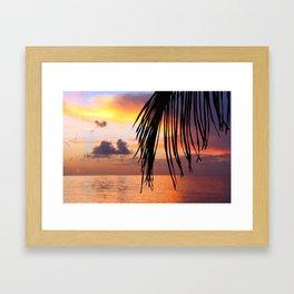 Sunset Palm Framed Art Print
