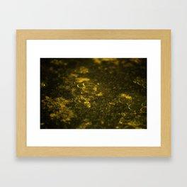 Oil Framed Art Print