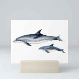 Atlantic spotted dolphin Mini Art Print