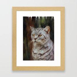 Grumpy Bossy Cat Framed Art Print