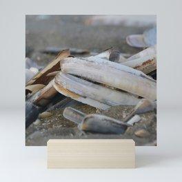 seashell, table knife at the North Sea beach Mini Art Print