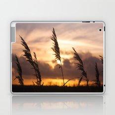 Sunset Night  Laptop & iPad Skin