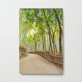 Bamboo at Arashiyama, Kyoto, Japan Metal Print
