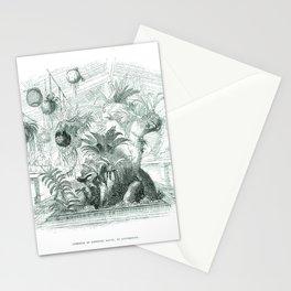 Vintage Botanical illustration, 1837 (Greenhouse) Stationery Cards