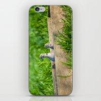 pigeon iPhone & iPod Skins featuring pigeon by Marcel Derweduwen