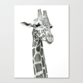 Drawing Of A Smiling Giraffe Canvas Print