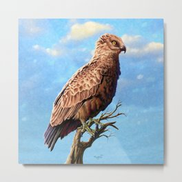 Brown Snake Eagle Metal Print