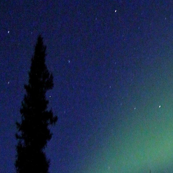Aurora Borealis Landscape Leggings