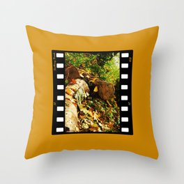 Soothing Brook Throw Pillow