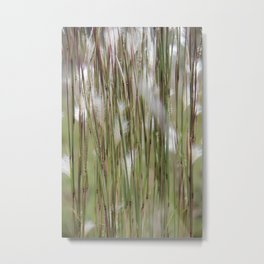 Wispy on green and magenta reeds Metal Print