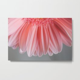 Pink With Layers Metal Print