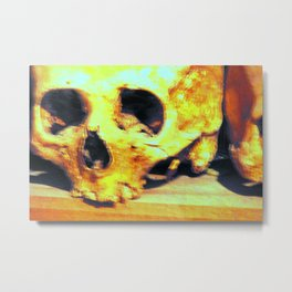 Skulls II Metal Print