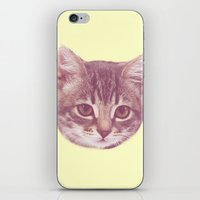 kitten iPhone & iPod Skins featuring Kitten  by Freak Clothing