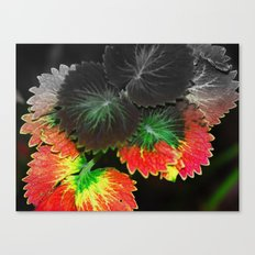 Fall in Summer Canvas Print