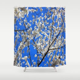 Cherry Blossoms in DC Shower Curtain