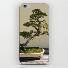 Bonsai Bonanza iPhone Skin