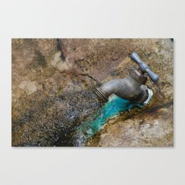 rusted drip Canvas Print