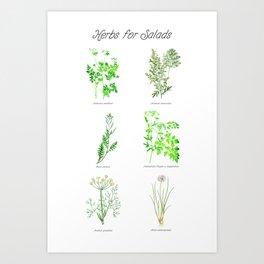 Herbs for Salads Art Print