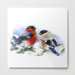 Bullfinches in winter time. Christmas Watercolor Art Metal Print