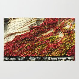 Fall colors Rug