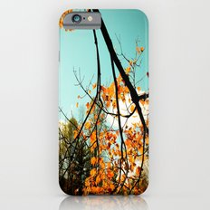 Colors of Fall iPhone 6s Slim Case