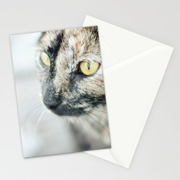 The (Homeless) Huntress Stationery Cards