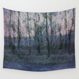 Unknown Land Wall Tapestry
